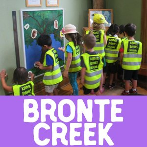 bronte creek, oakville, daycare, field trip